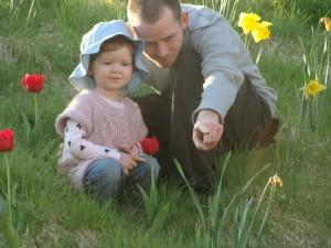 in tulips