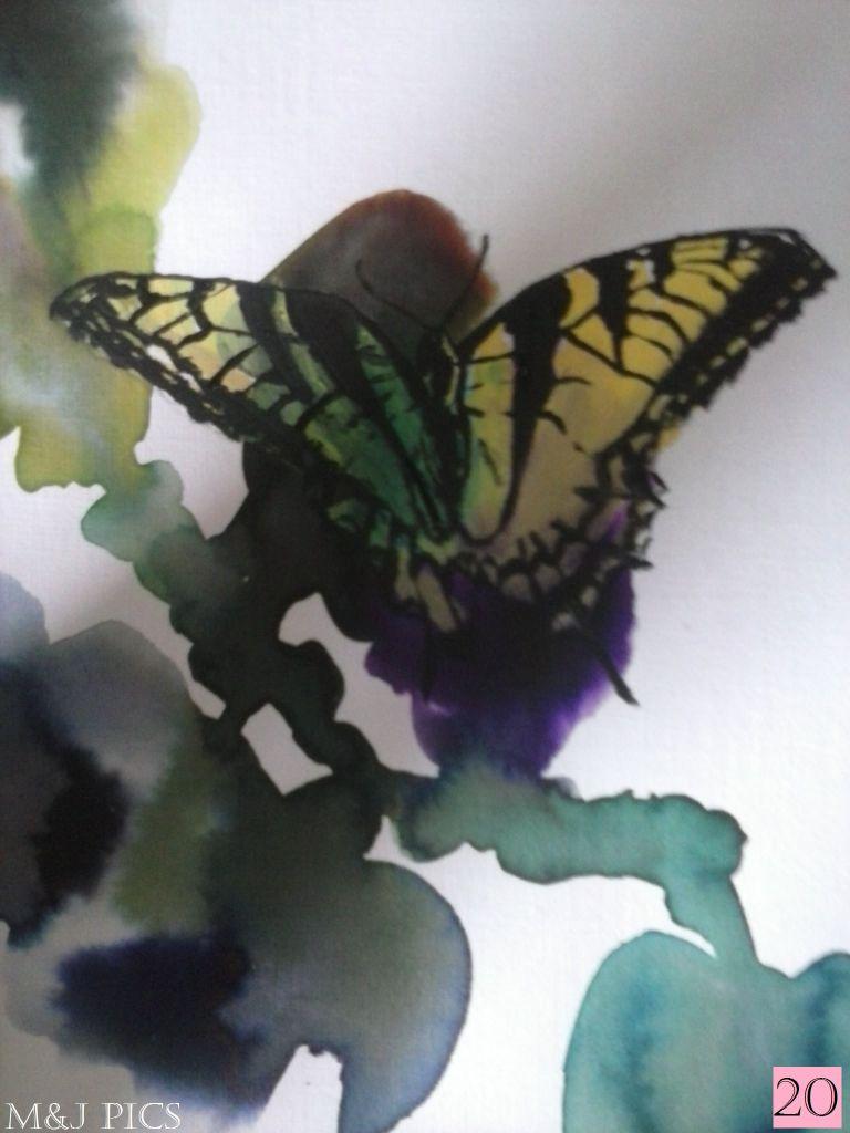 Butterfly Tutorial 20lge