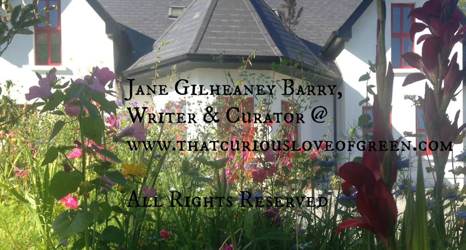 Our house in flowers - Jane Gilheaney Barry - That Curious Love of Green