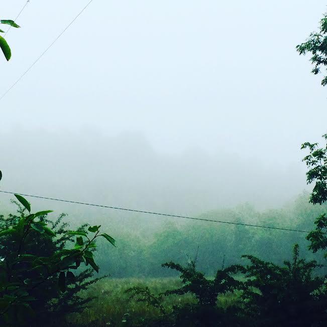 Mornings of Mist & Magic