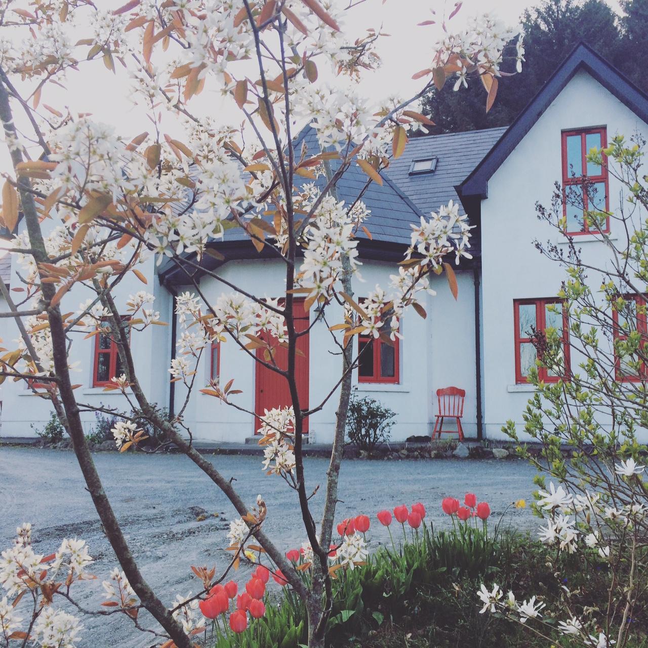 Write Yourself Free – 4 Week Creative Writing Programme in Leitrim